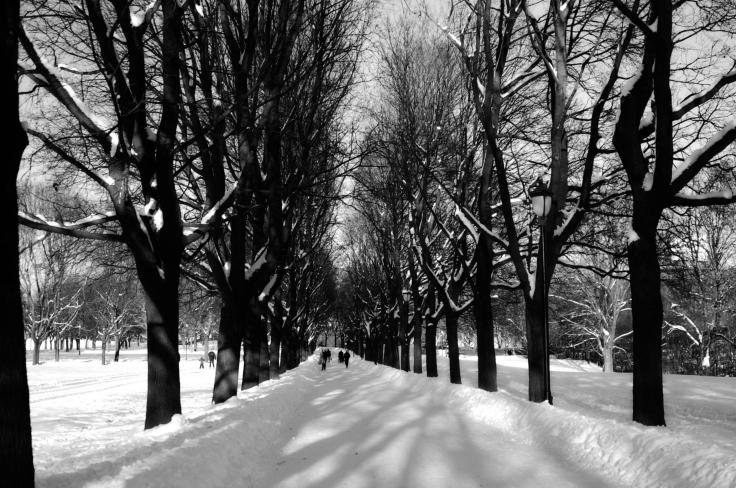 oslo-snow